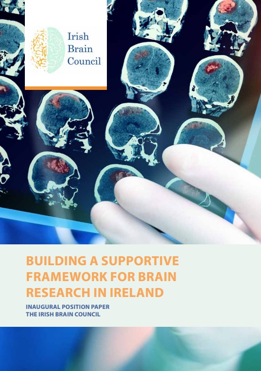 brain research paper From basic science to clinical trial designs, the national brain tumor society partners with the world's leaders in research, public policy, and clinical care to advance the understanding of brain tumors, expand the availability of new treatments, and drive the discovery of a cure.
