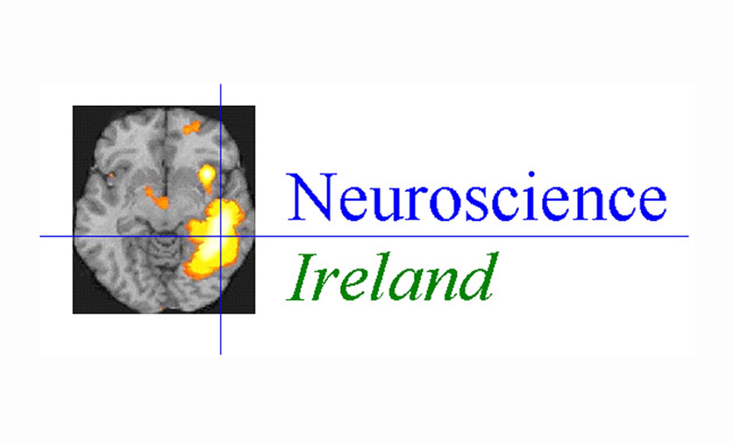 NeuroIreland Logo 300ppi 20cm wide