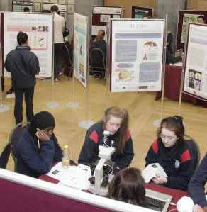 Neuroscience event at NUI Galway Photograph by Aengus McMahon