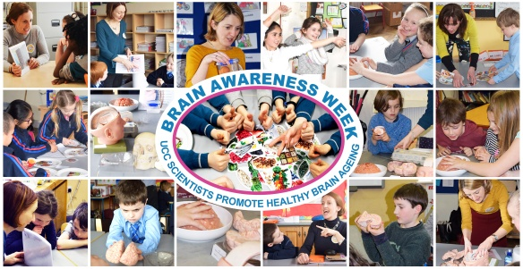 Brain Awareness week MONTAGE_24-4-2016.jpg