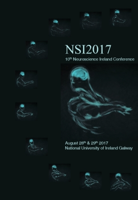 NSI Booklet